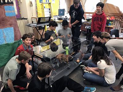 Glen Ames Robotic Lab