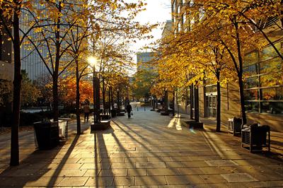 Rays_of_autumn_light_in_Toronto